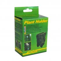 Lucky Reptile Plant Holder