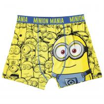 Character Character Single Boxer Junior Boys, Minions, 164