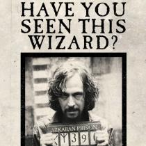 The Art Printorium Ltd Blahopřání Harry Potter 3D - Have You Seen This Wizard?