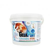 Orling Gelapony Chondro HYAL 1800g