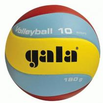 Gala Volleyball 10 BV 5541 S